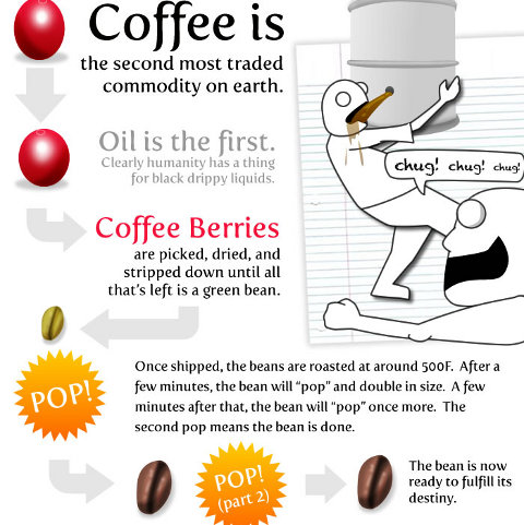 15 things knowing about coffee 3