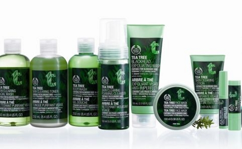 the-body-shop-tea-tree-skincare-range-482x298